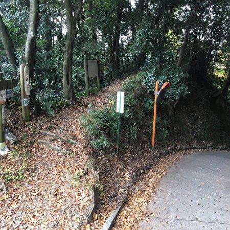 Ikoma, Giappone: 生駒の基点から法隆寺まで縦走