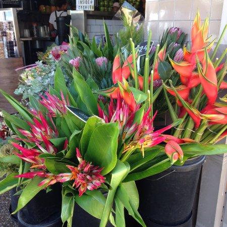 Tugun Fruit & Flowers