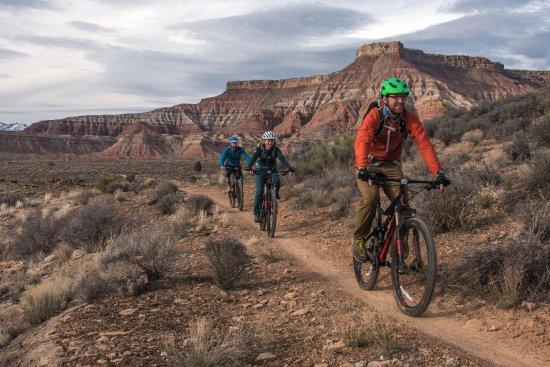 Springdale, UT: Bike Rentals & Guided Trips