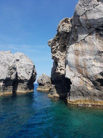 Glass Bottom Boat Trip: 20171006_142621_large.jpg