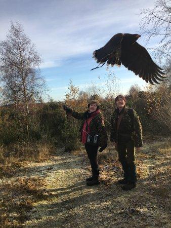 Bonnyrigg, UK: Kass off on the hunt.