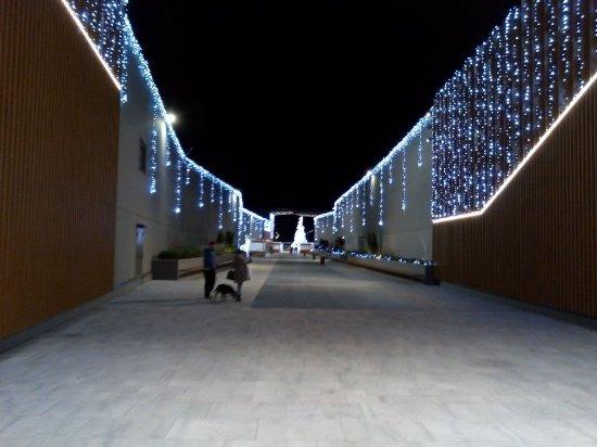Nichelino, Italien: IMG_20171209_193748629_large.jpg