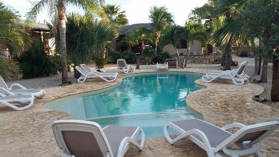 Bridanda Apartments Bonaire: IMG-20171205-WA0003_large.jpg