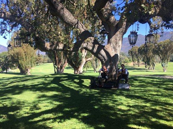 Ojai, Californië: Soft live music view from open breakfast area