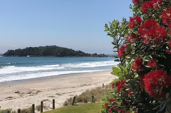 Mount Maunganui, Nova Zelândia: photo4.jpg