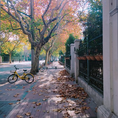 Former French Concession: photo3.jpg