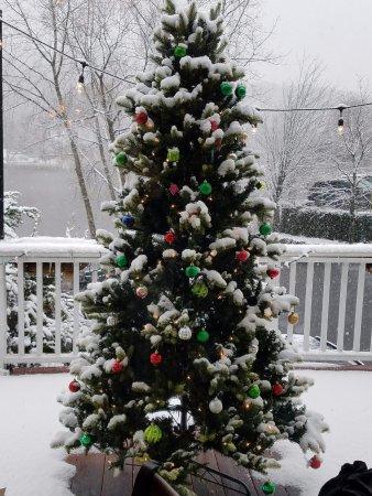 Roslyn, Estado de Nueva York: Christmas tree up close and personal...what a beautiful sight of a White Christmas!
