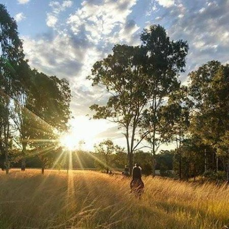 Imbil, Australia: Afternoon trail ride