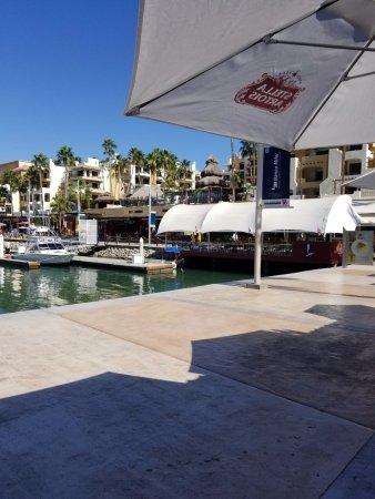 Marina Cabo San Lucas: Marina 4.