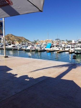 Marina Cabo San Lucas: Marina 5.