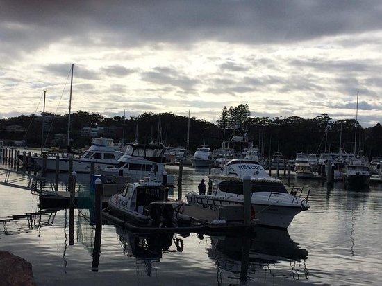 Nelson Bay, Australia: D'Albora Marina