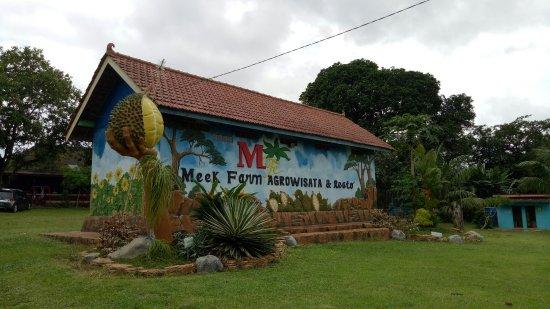 Wisata Kebun Durian Banjarbaru