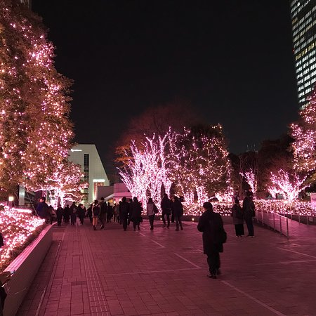 Shinjuku Southern Terrace: photo0.jpg