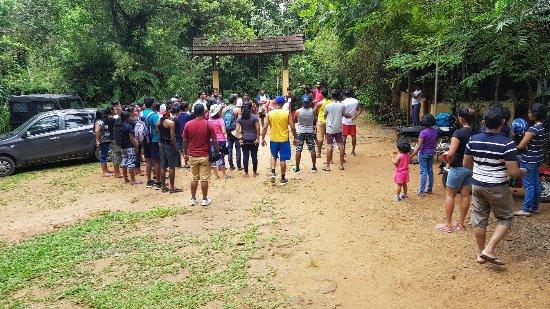 Neluwa, Sri Lanka: 20171126_111357_large.jpg
