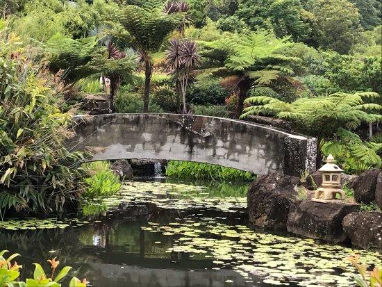 Maleny, أستراليا: Asian themed garden