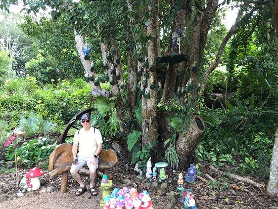 Maleny, أستراليا: Part of childrens fairy garden