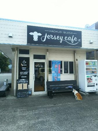 Hachijojima Jersey Cafe