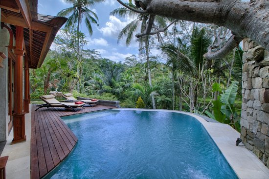 Nau Villa Ubud Updated 2018 Prices Hotel Reviews Bali Tripadvisor