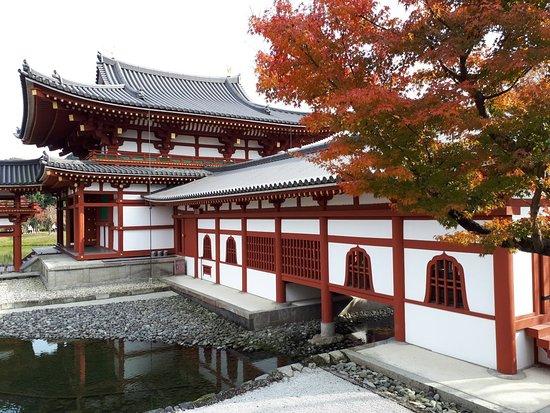 Byodoin Temple: 1512889080470_large.jpg
