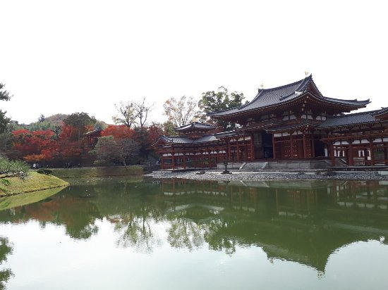 Byodoin Temple: 1512889068610_large.jpg