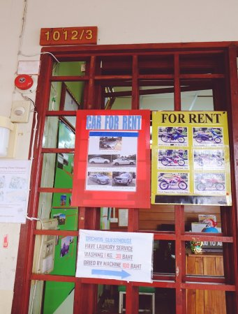 Orchids Guest House: Motorcycle for rent