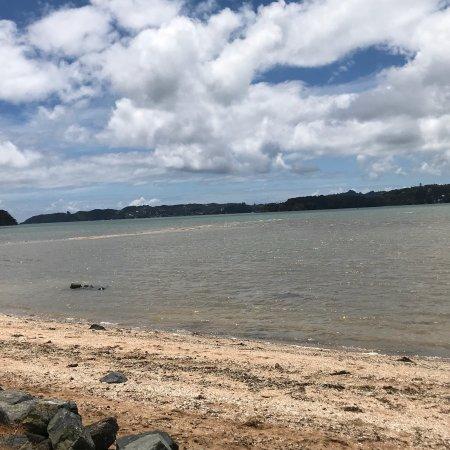 Paihia, New Zealand: photo1.jpg