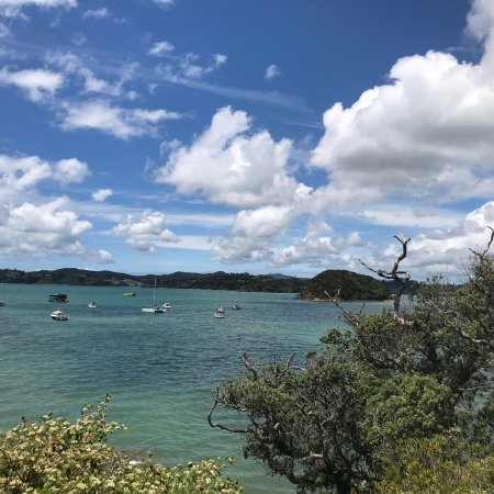 Paihia, Yeni Zelanda: photo3.jpg