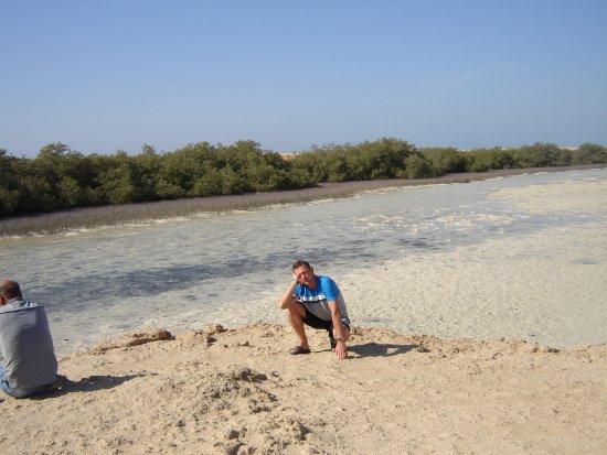 Ras Mohammed, Egipt: Мангровая роща