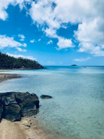 Airlie Beach, Australia: Snorkeling spot on Hook Island