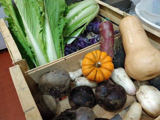 Sillans-la-Cascade, Frankrijk: Légumes direct du village, en production BIO