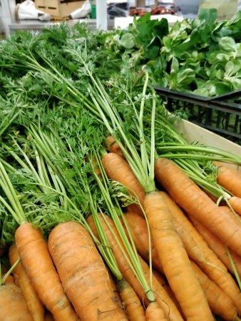 Sillans-la-Cascade, Frankrijk: Légumes en BIO de notre village Sillans la cacade