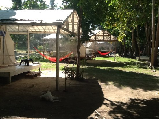 Port Barton, الفلبين: Canvas tents