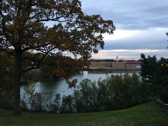 Crystal Lake, IL: ホテルの後ろ側には沼がある。