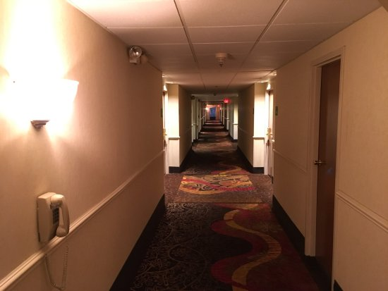 Crystal Lake, IL: ホテルの廊下。
