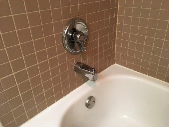 Crystal Lake, IL: 使い方がわからなかった蛇口。ぐるっと反対側に回すとちょうど良いお湯が出る。