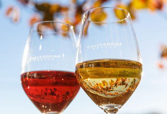 Calitzdorp, Güney Afrika: Wine at Cellar Prices