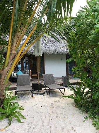 North Ari Atoll Picture