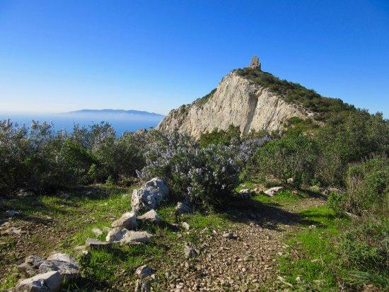 Semproniano, Italien: Torre Capo d'Uomo (Monte Argentario - GR)