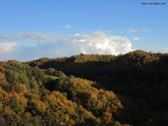 Semproniano, Italien: Riserva di Monterano presso Civitavecchia
