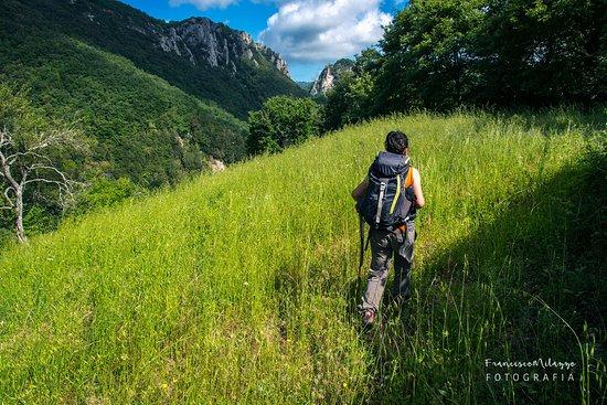 Semproniano, Italien: Riserva di Rocconi (Alta Valle del Fiume Albegna - GR)