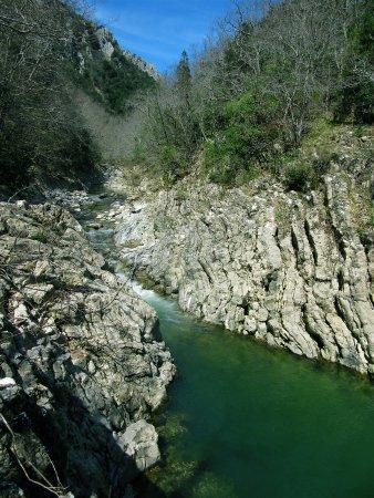 Semproniano, Włochy: Riserva di Rocconi