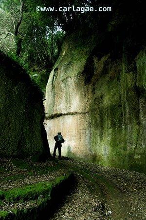 Semproniano, Włochy: Via cava di San Sebastiano (Pitigliano)