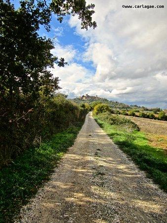 Semproniano, Włochy: Montemerano presso Saturnia (GR)