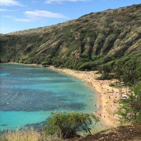 Hanauma Bay Nature Preserve: photo3.jpg
