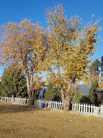 Autumn In Ayubia PTDC