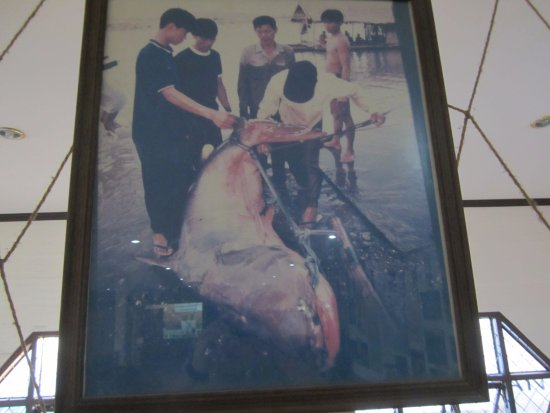 Chiang Saen, Tailandia: The one that didn't get away!