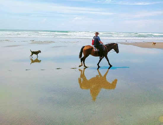 The Riding Adventure: We had the beach to ourselves!