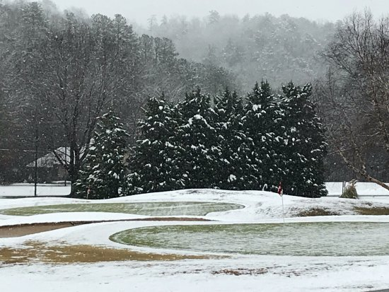 Lake Lure, NC: Snowy trees on the golf course