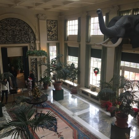 George Eastman Museum: photo3.jpg