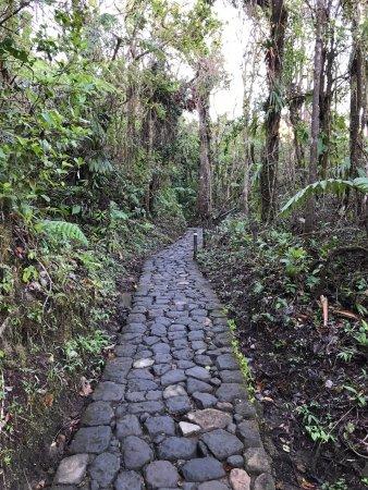 Saint-Claude, Guadeloupe: Première partie de l'ascension